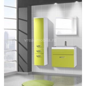 mobila vernil baie moderna