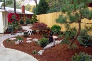 model gradina arbusti