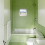 mozaic vernil decor baie mica cu cada wc si lavoar