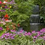 Flori care ne coloreaza gradina in iunie