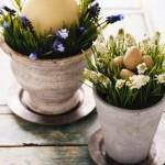 oua de gasca si de prepelita asezate in ghivece cu flori de primavara