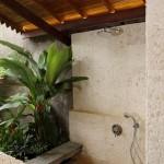 plante exotice verzi langa cabina de dus placata cu piatra naturala baie moderna 2015