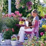 5 plante pentru un balcon insorit