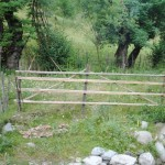 poarta gard simplu