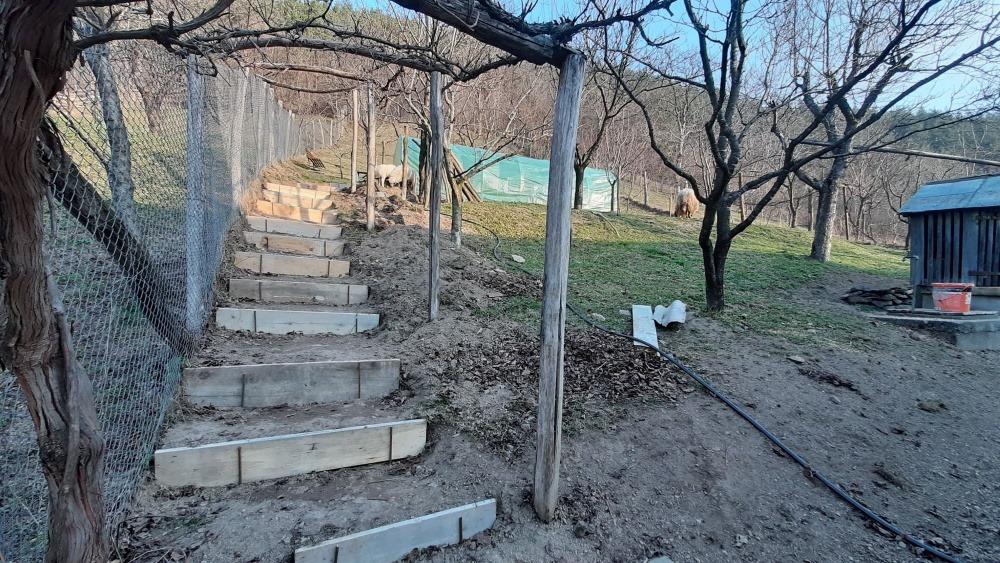 scara gradina panta contra-trepte scandura