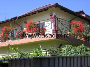 Pregatirea jardinierelor pentru terasa casei