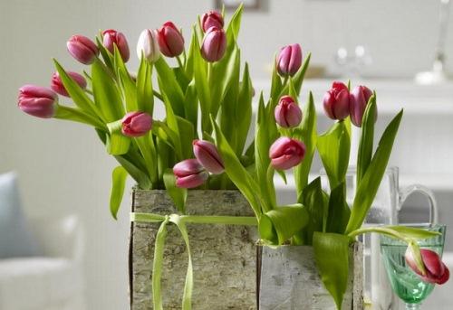 vaze flori scoarta de copac