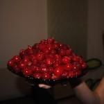 visine pentru dulceata
