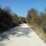 pe drumuri