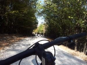 Cu bicicleta, prin paduri
